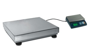 External platform for counting scale