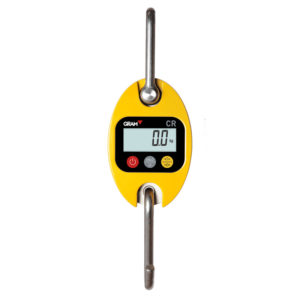Hook industrial scale